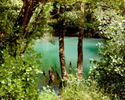 La piscine naturelle du Monticule Festival